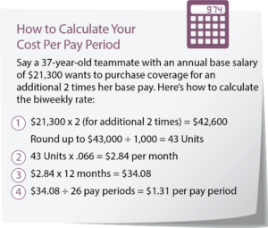 Supplemental Life Insurance Calculator